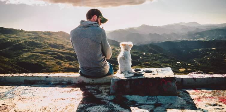 chien heureux avec son meilleur ami humain