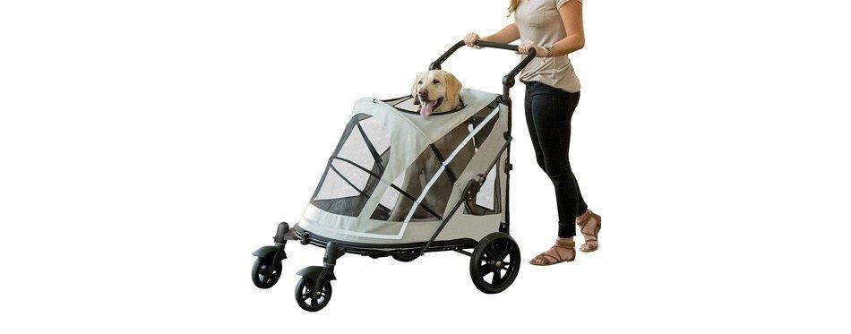 Grande poussette pliable compacte et maniable pour chiens